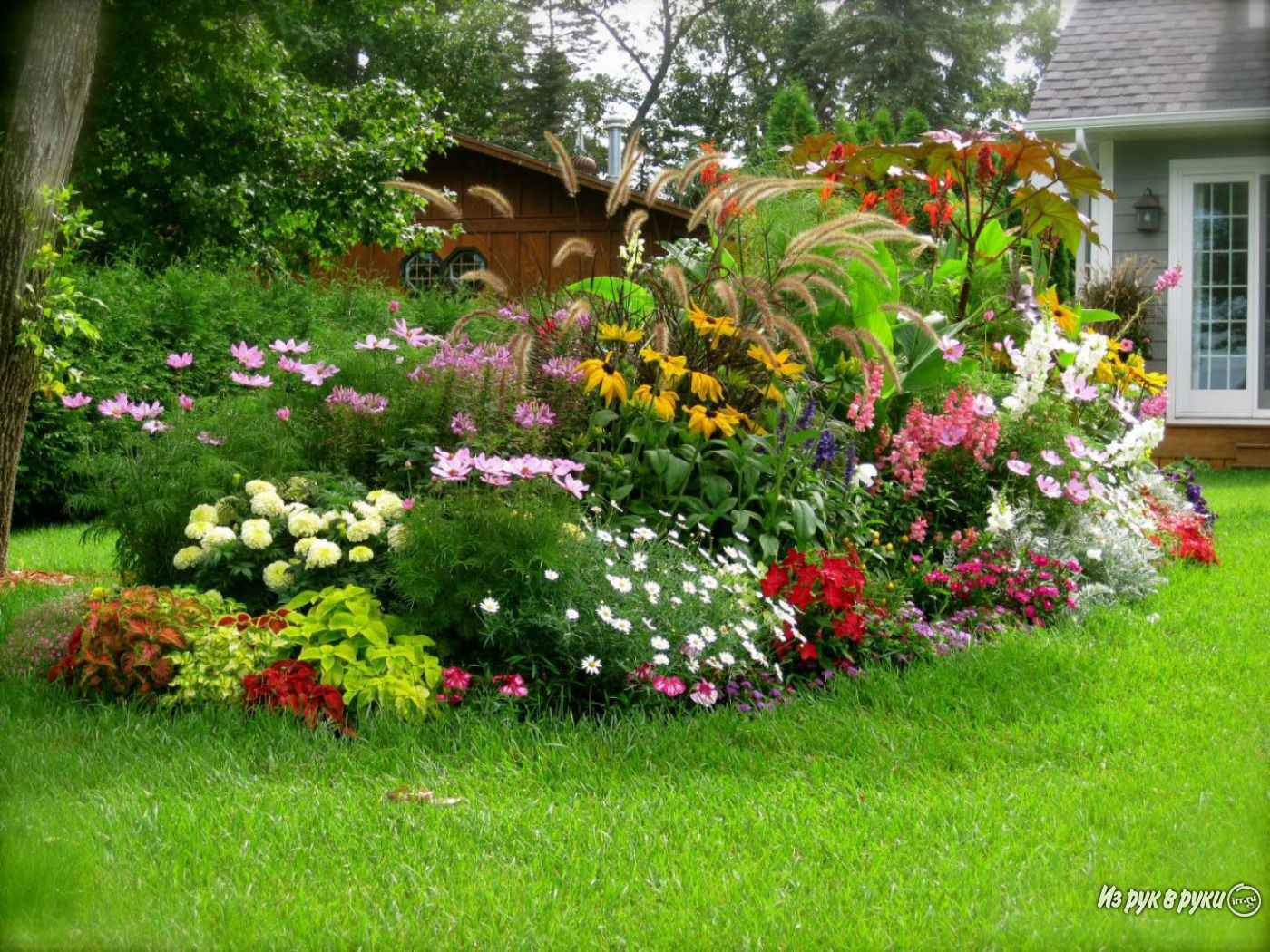 plants and flowers for landscaping - HD1280×960